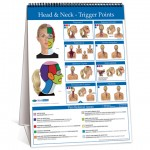 Flip-Chart-Head-and-Neck-480x480px_72ppi_Blurred_RGB[1]